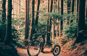 Dvebike 2 nature